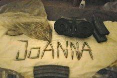 joanna-palani-bullets